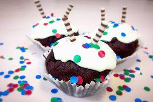 Förde Campus GmbH | Zweiter Geburtstag mit Muffins | Weiterbildung Kiel